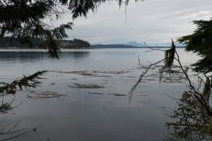 150916-19-vancouver-island