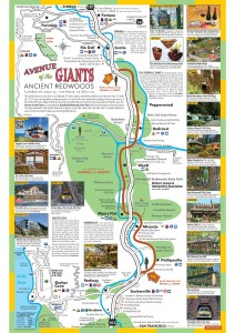 2015-avenue-of-the-giants-brochure-and-map3